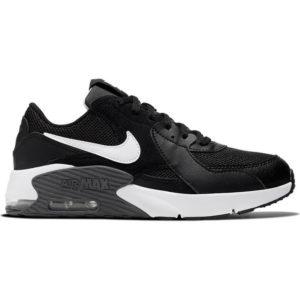 Nike air max axcee (2)